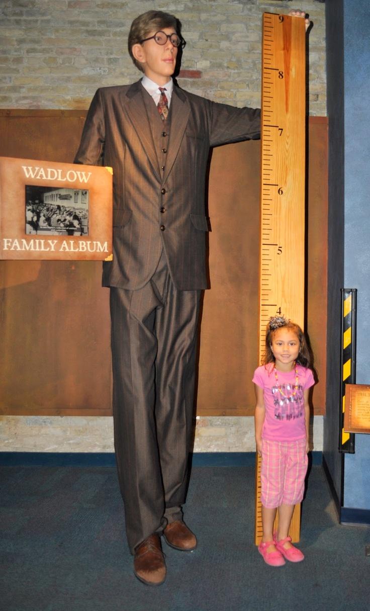 Фото самого высокого челвека в мире в Музее Рипли в Паттайе